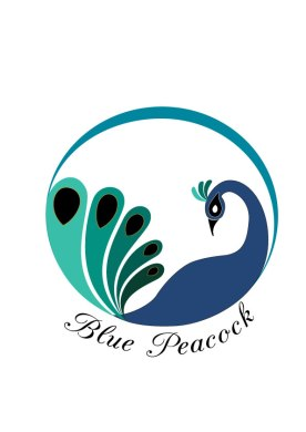 Blue-Peacock